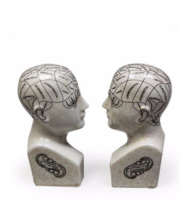 Ceramic Phrenology Head Bookends
