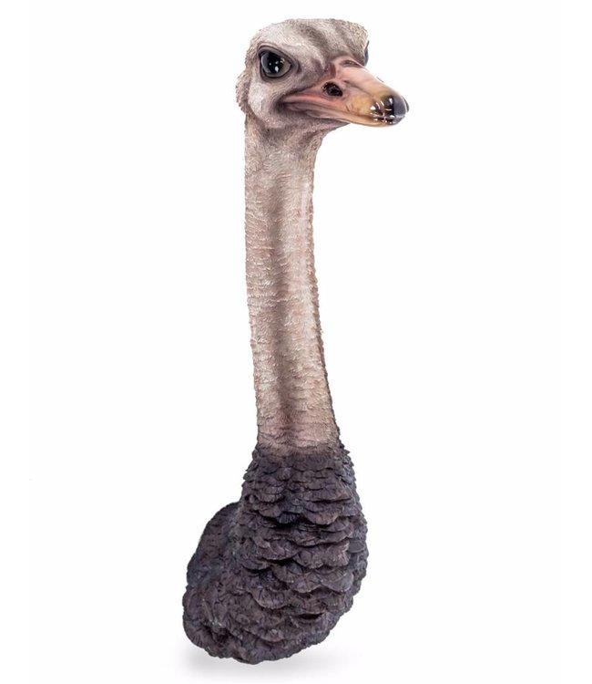 M&R Ostrich Head Wall Figure