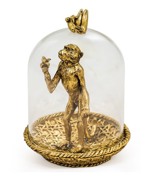 Gold Hungry Monkey in Glass Dome