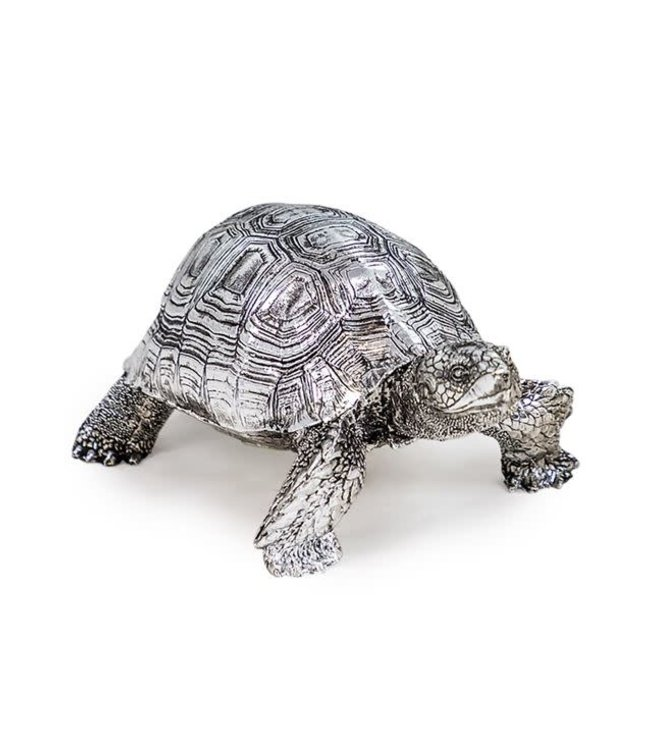 Small Silver Tortoise
