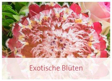 Exotische Blüten