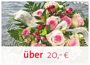 20,00€ und höher