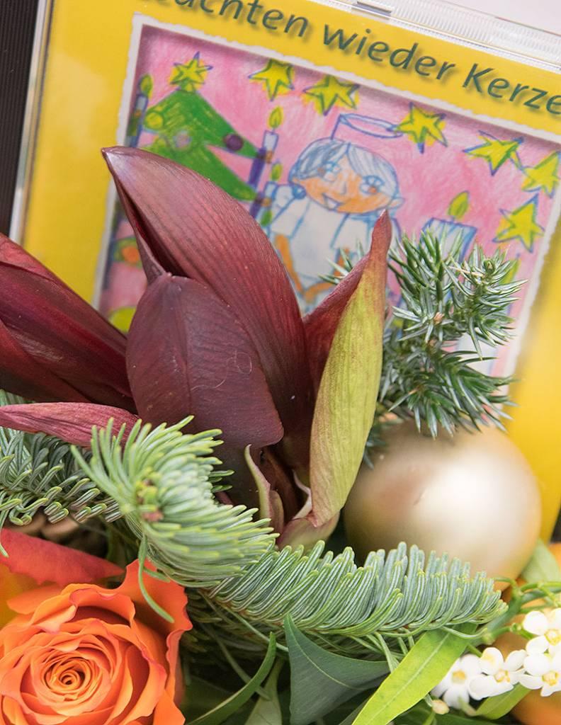 """""""Carolin"""" - mit Weihnachts-CD"""