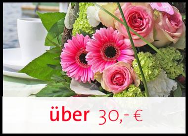 30,00€ - und höher