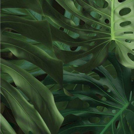 Kek Amsterdam Tapet Tropical Monstera blade grøn silkepapir 97,4x280cm