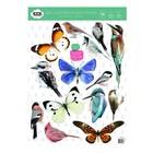Kek Amsterdam Wall Sticker Set oiseaux et papillons colorés 42x59cm vinyle