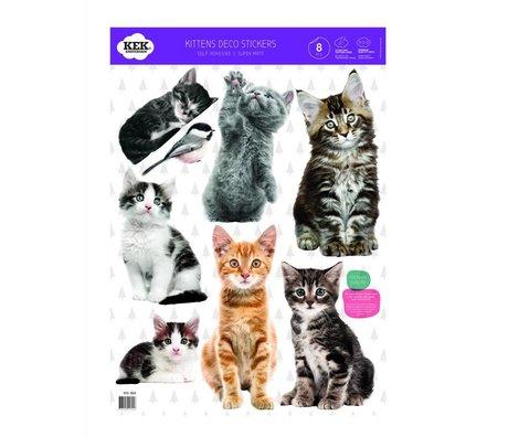 Kek Amsterdam Wall sticker set Kitten Multicolor vinyl foil 42x59cm