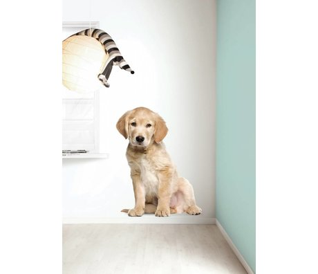 Kek Amsterdam Stickers muraux XL chiot Golden Retriever, 91x117cm