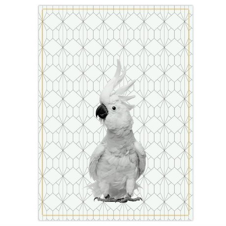 pt, Paño de cocina Kakadu negro blanco algodón 50x70cm