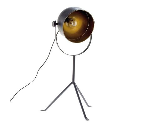 Riverdale Lampe de table Boston en métal gris foncé 33,5x38,5x70cm