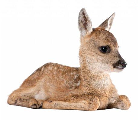 Kek Amsterdam Vægoverføringsbillede Deer Forest Friend, brun, 40x33cm