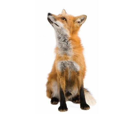Kek Amsterdam Vægoverføringsbillede Fox Forest Friend, brun, 23x46cm