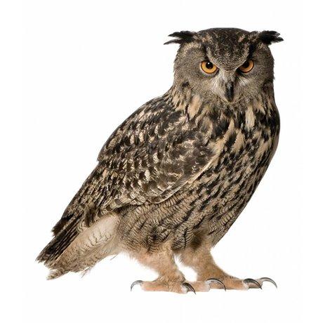Kek Amsterdam Vægoverføringsbillede Owl Forest Friend, brun, 30x32cm