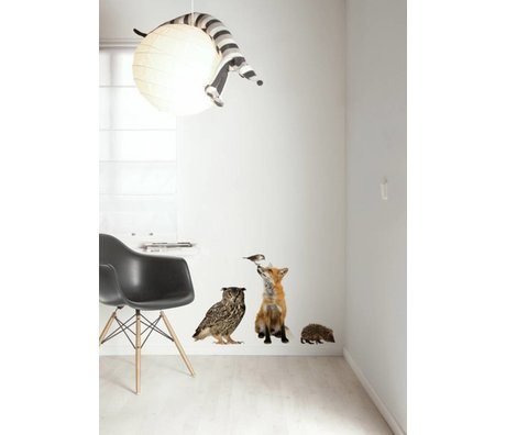 Kek Amsterdam Wall Decal Forest Friends set 4, ulticolour