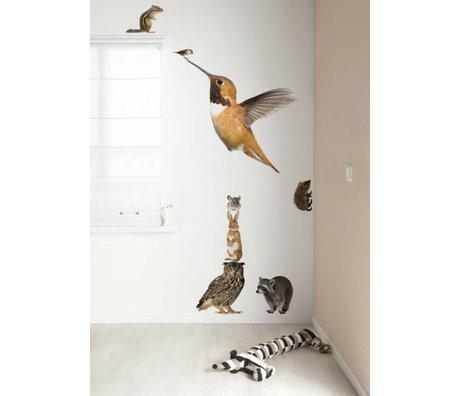 Kek Amsterdam Vægoverføringsbilleder XL Hummingbird Set Forest Friends, multifarvet, 57x98cm