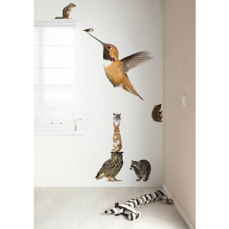 Kek Amsterdam Wall Decal XL Hummingbird Set Forest Friends, multicolore, 57x98cm