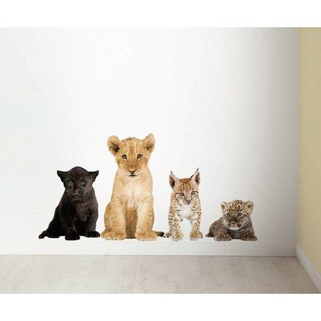 Kek Amsterdam Stickers muraux dans Set de 4 lion, panthère noire, le lynx, le léopard, div. Dimensions