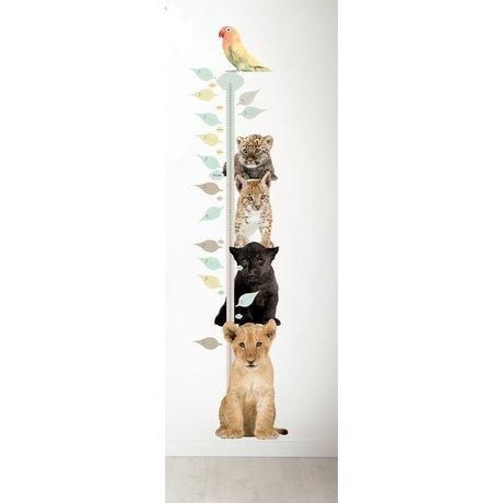 Kek Amsterdam Wandtattoo und Messlatte, div. Tiere, 40x150cm