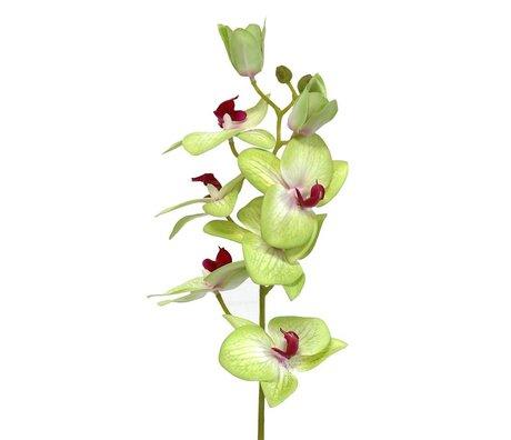 HK-living Deko Orchideenzweig 71 cm