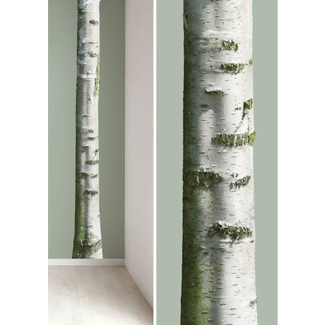 Kek Amsterdam Stickers muraux tronc d'arbre de vinyle 'Accueil Arbre 7', brun / vert, 20x300cm
