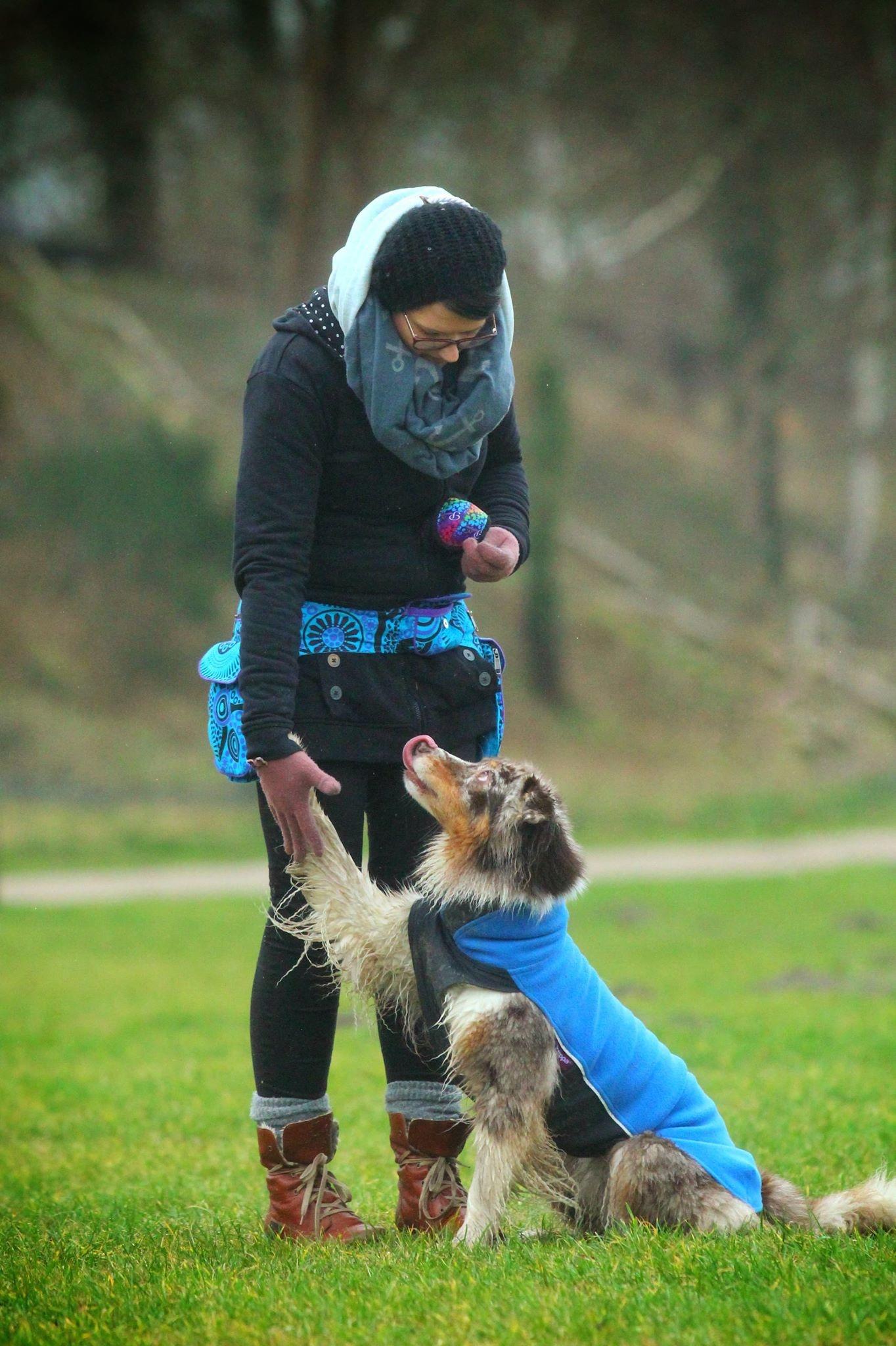 Doppel Hip Bag für Hundebesitzer - Hellblau lila