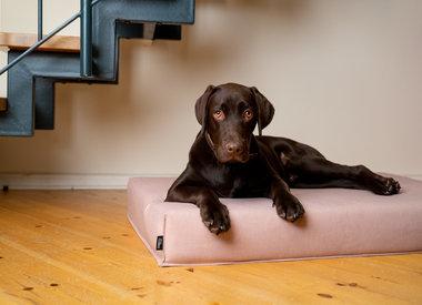 FINNTO - Hundematten und -betten