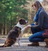 Doppel Hip Bag für Hundebesitzer braun