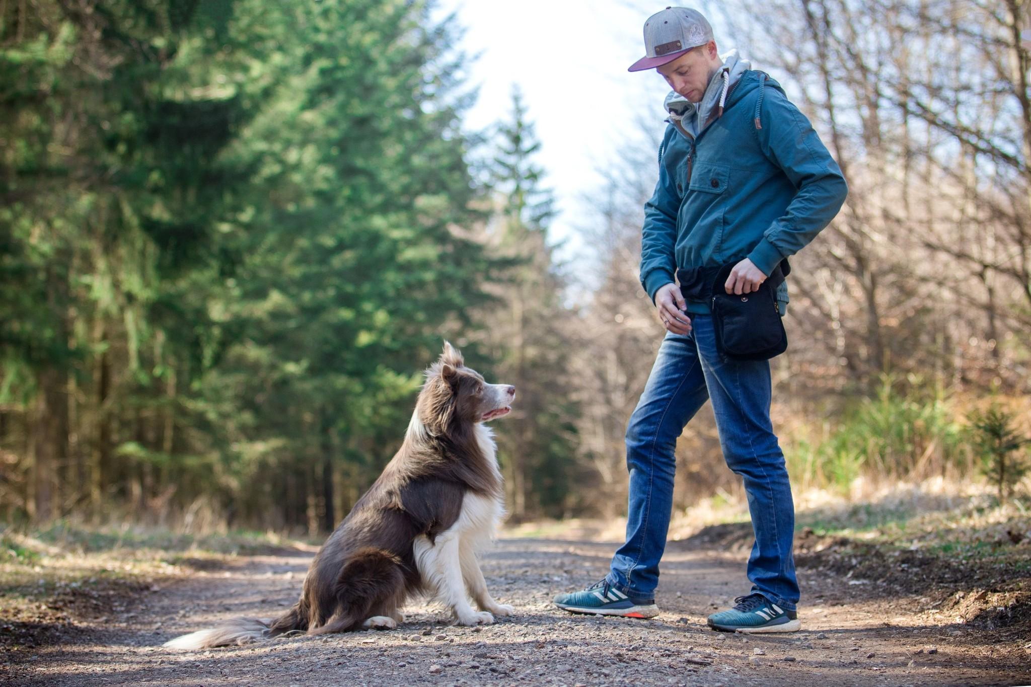 Doppel Hip Bag für Hundebesitzer - Schwarz