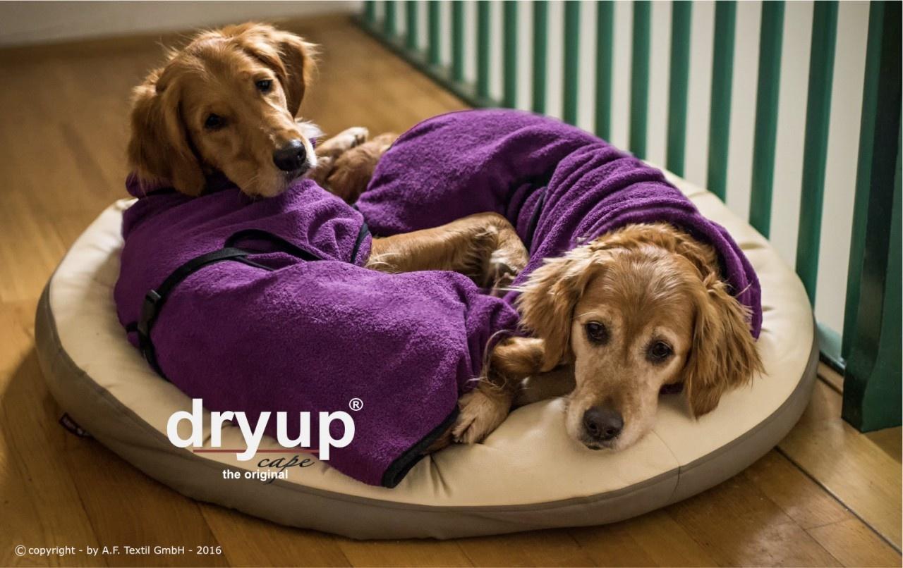 DryUp Cape - Der Hundebademantel - billberry