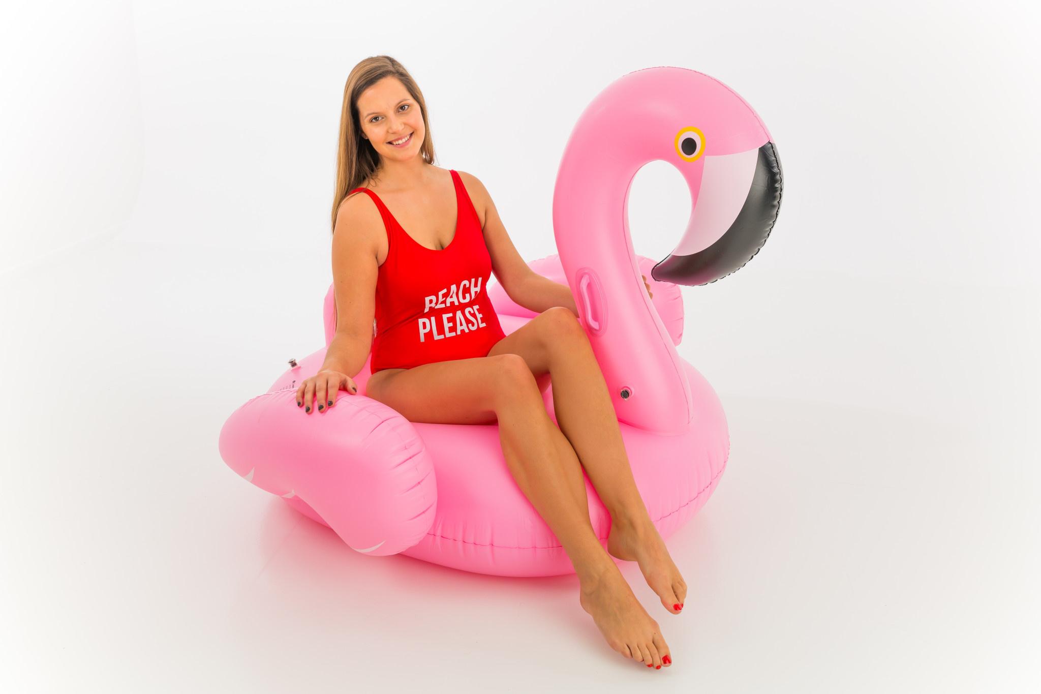 DIDAK Flamingo Ride-On - 140x130x120cm