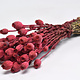 DF Papaver red 65 cm