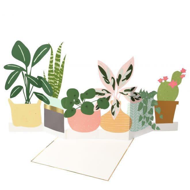 MERIMERI Potted Plant concertina card