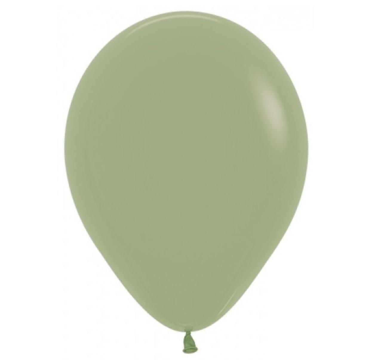 HH 12 balloons latex eucalyptus 30cm