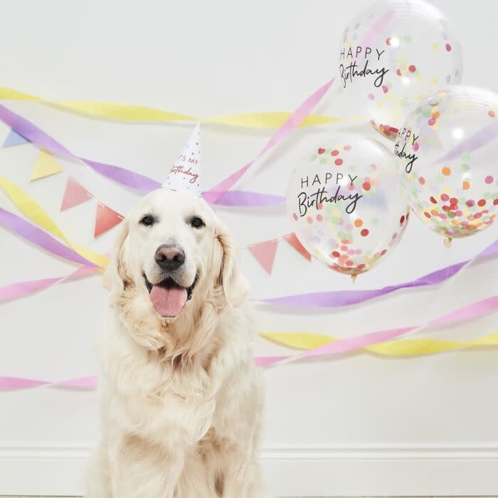 GINGERRAY HAPPY BIRTHDAY PET PARTY KIT FOR DOGS & CATS