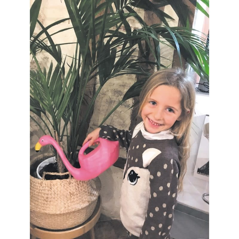 TP flamingo watering can