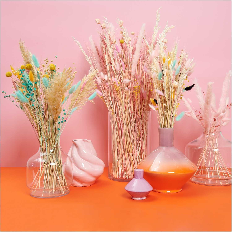 Rico NAY Dried pampas grass, pink, 6 pcs