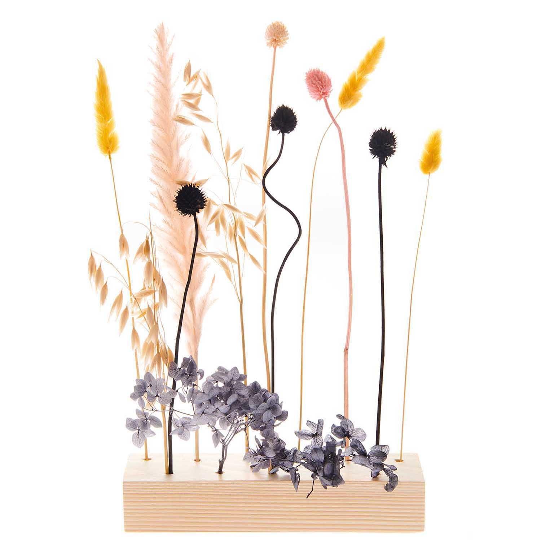Rico NAY Dried flowers set, pastel black