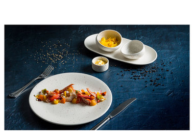 Tinto White with 5 years edge chip warranty on the round plates