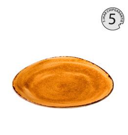 Stylepoint Jersey plate triangle orange 27 cm