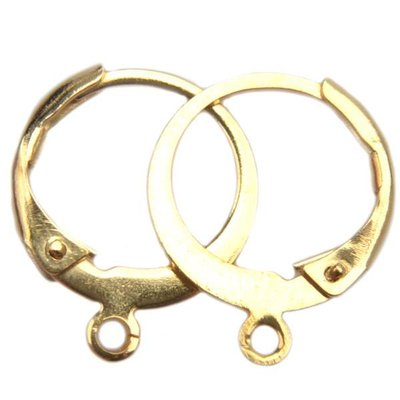Rvs Oorring RVS goud 14,5x12mm - 1 paar