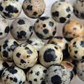 Bruin Edelsteen kraal Dalmatier Jasper rond 6mm - 10 stuks