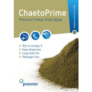 Premium freeze dried Chaetoceros muelleri