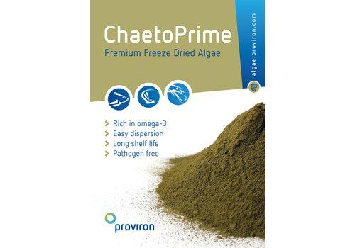 ChaetoPrime