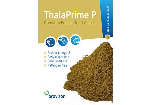 ThalaPrime P