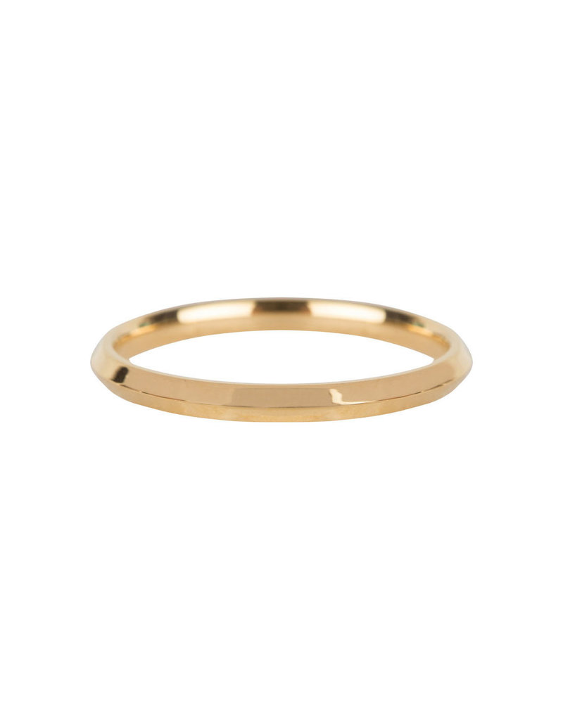 Charmins CHARMINS BASIC HOOKED GOLD