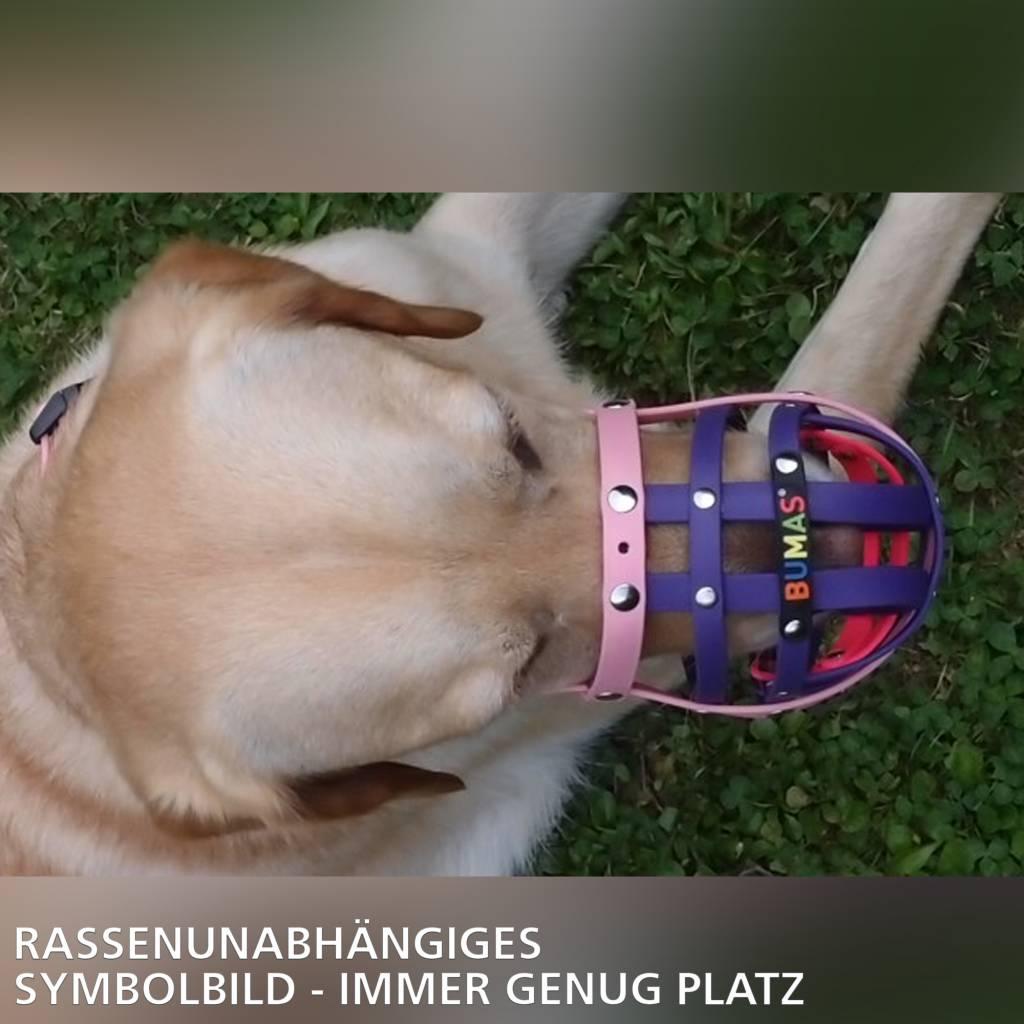 BUMAS - das Original. BUMAS Muzzle for Pugs made of BioThane®, black/neon orange