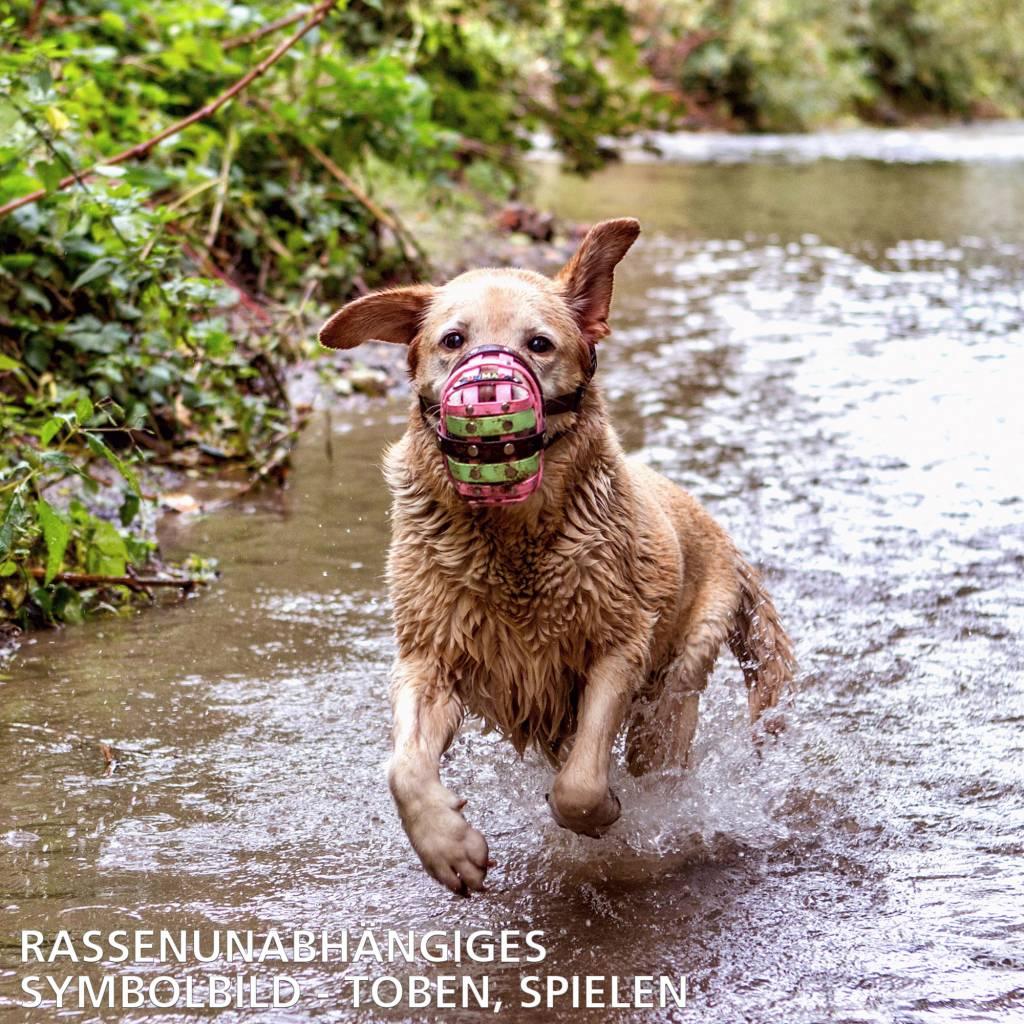 BUMAS - das Original. BUMAS Muzzle for Bulldogs made of BioThane®, neon green/black