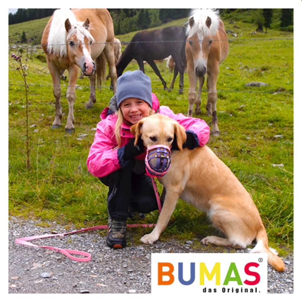 BUMAS - das Original. BUMAS – easy going – hondenriem van BioThane® en licht bruin