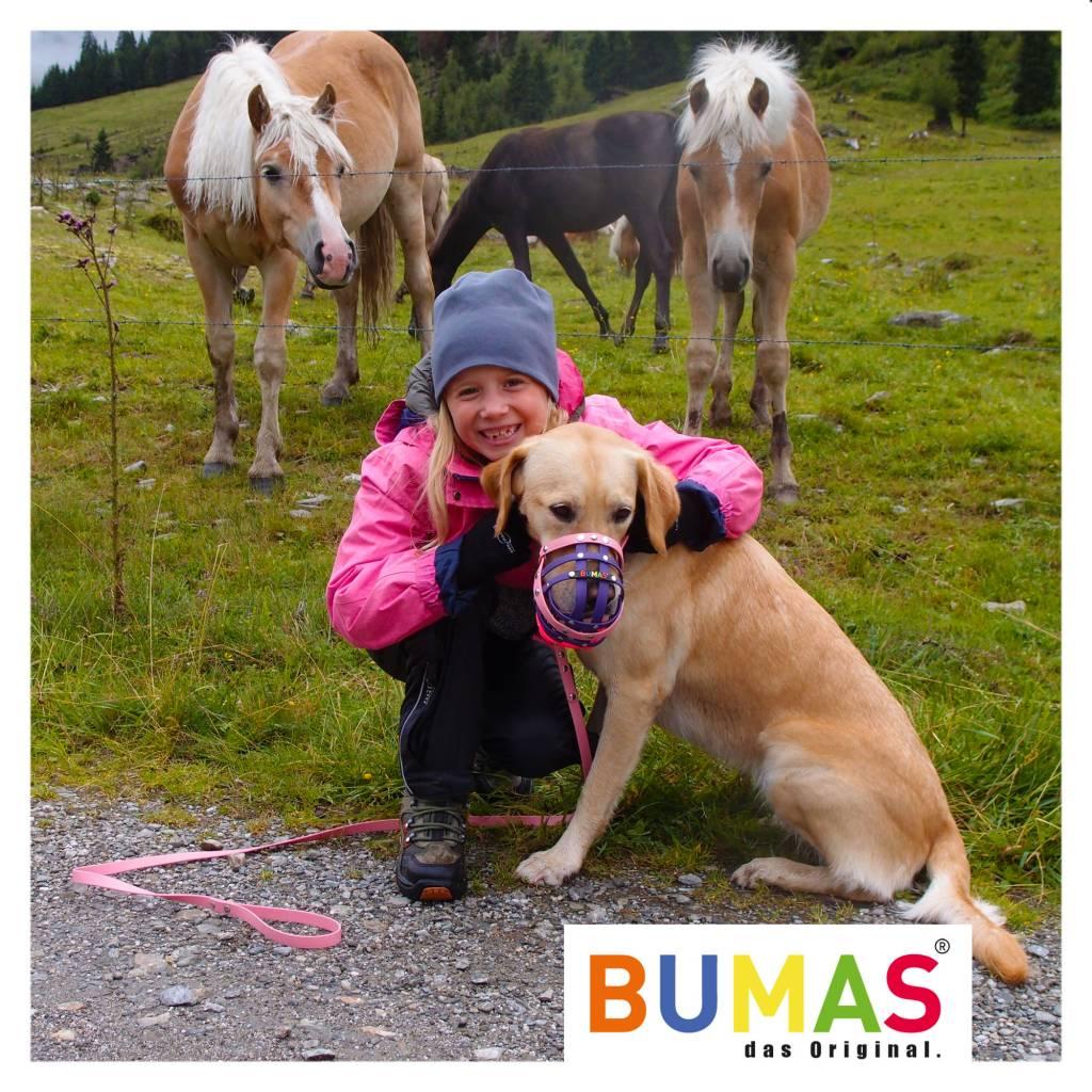 BUMAS - das Original. BUMAS – easy going – hondenriem van BioThane® en rose