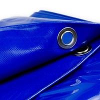 8x10 Blauw 650gr PVC afdekzeil met 18mm zeilringen (nestels, ringogen)